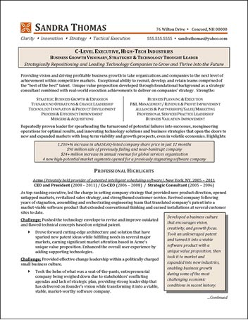 C-Level High-Tech Industry Executive Resume Example